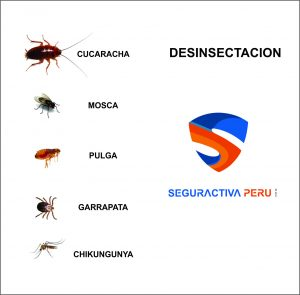 DESINSECTACION LIMA